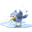 clicktotweet_poolbird